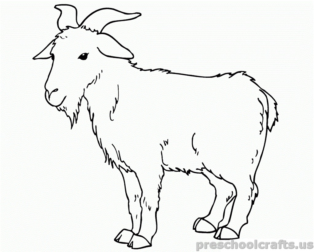 free printable Goat Coloring Pages for preschooler Preschool Crafts