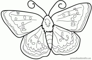 Free–printable-animals-butterfly-coloring-pages-for-first-grade