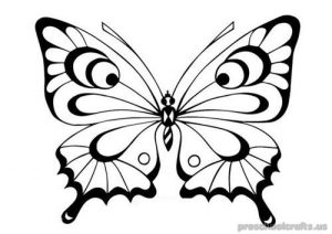 butterfly-coloring pages-for-kids