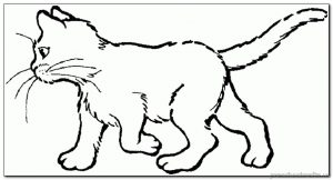 kitten coloring-pages