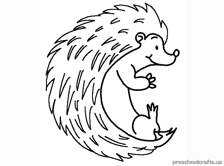 free printable hedgehog colouring pages for kids
