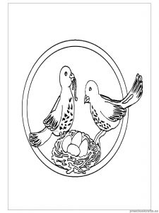 swallow coloring pages for preschoolers
