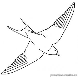 swallow free printable coloring pages for kindergarten