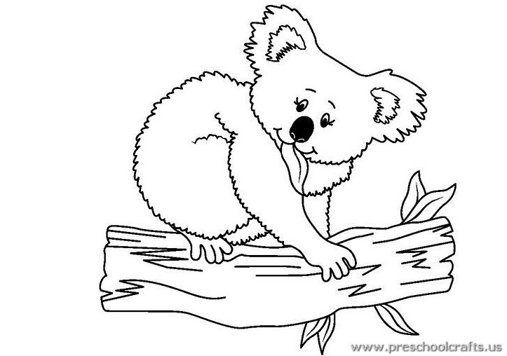 Free Printable Koala Colouring Pages For Kids Archives Preschool - Koalas-coloring-pages