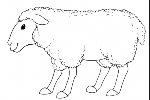 sheep-coloring-pages-for-preschool-free-printable-coloring-pages