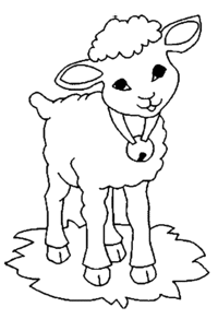 sheep-colouring-pages-for-preschool-free-printable-coloring