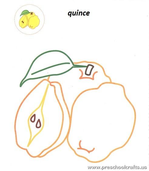 quinceprintablefreecoloringpageforkids Preschool