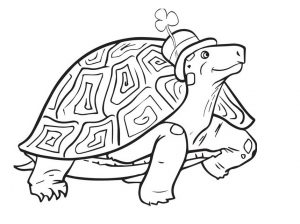 printable St. Patrick's Day tortoise coloring pages for preschool