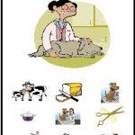 free printable community helpers worksheets for kids