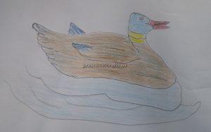 Duck pictures craft ideas for preschool and kindergarten