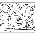 fish coloring page - preschool aquarium coloring pages