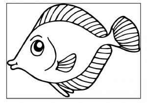 Animal coloring pages for kids preschool and kindergarten for Fish coloring pages for preschool