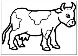 free printablecow coloring pages preschool