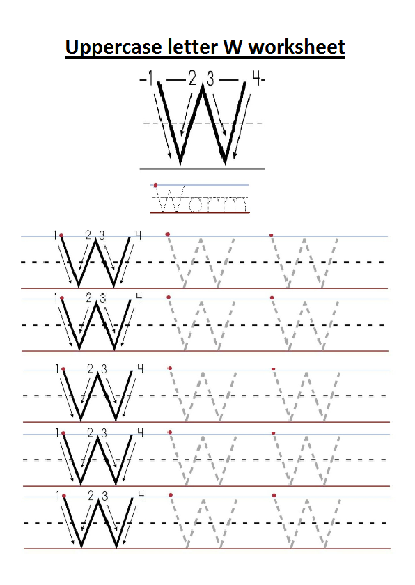 Letter W Kindergarten Worksheets