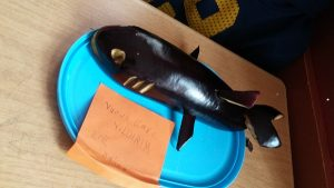 vegetables dolphin craft activity from eggplant