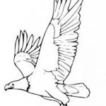 Download free Eagle coloring pages ideas for preschool