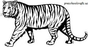 Download free printable Tiger coloring pages for kids
