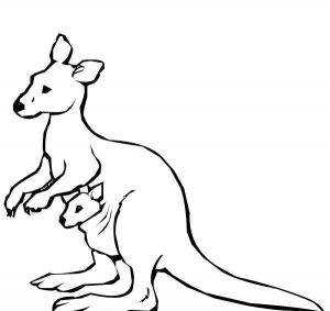Download free printable kangaroo coloring pages ideas for children