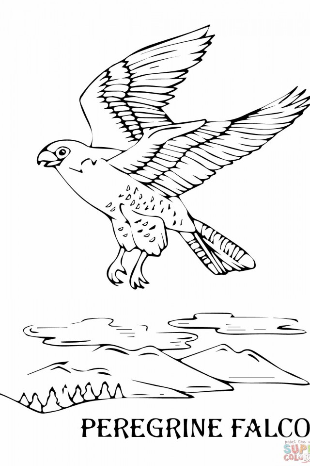 Flying-Peregrine-Falcon-Coloring-pages