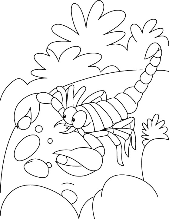 Scorpion-Coloring-Pages-for-children