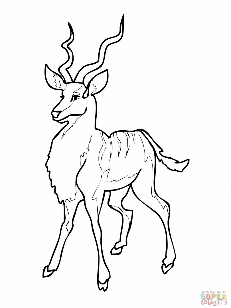 antelope-coloring-page-for-kids