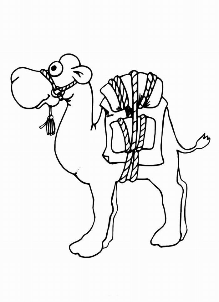 Camel Coloring Pages For Students - Preschool and Kindergarten
