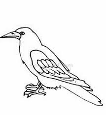 canary coloring pages for preschool