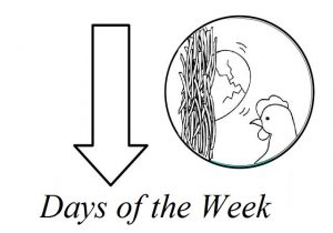 days of the week worksheet for preschool sunday