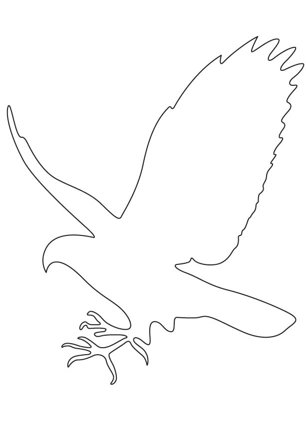 Hawk Amp Falcon Coloring Pages For Kids Preschool And