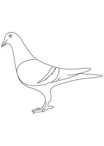 free-animals- Pigeon-printable-coloring-pages-for-preschool