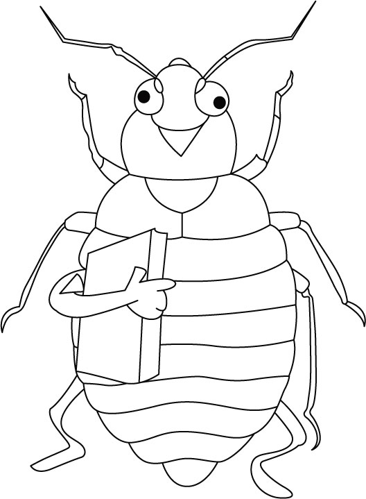 free-animals- cicada -printable-coloring-pages-for-kindergarden