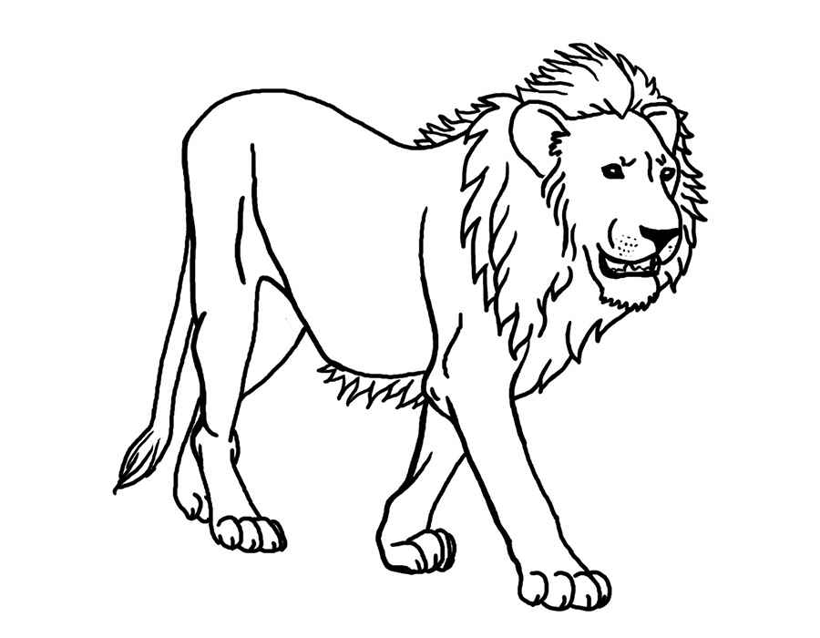 free-animals-lion -printable-coloring-pages-for-preschool