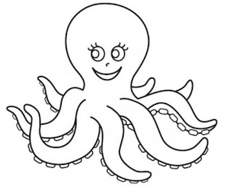free-animals- octopus -printable-coloring-pages-for-preschool