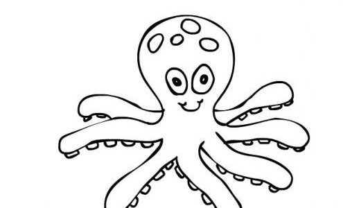 free-animals-octopus-printable-coloring-pages-for-preschool