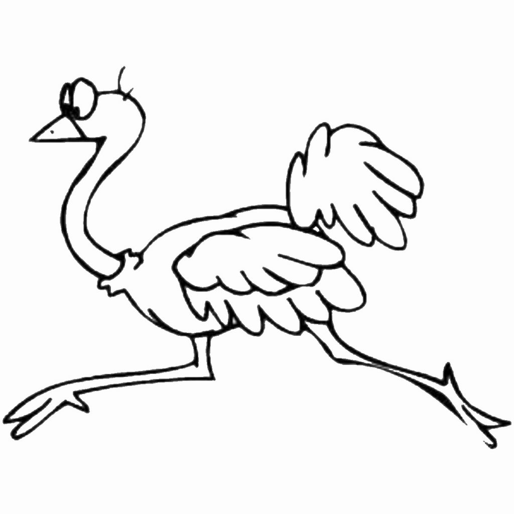 free-animals-ostrich-printable-coloring-pages-for preschool