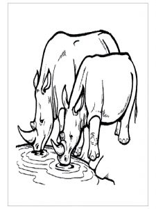 free-animals-rhino-printable-coloring-for-preschool