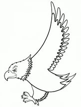 free-doğan-printable-coloring-pages-for-preschool