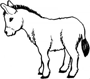 free-donkey-printable-colouring-pages-for-preschool