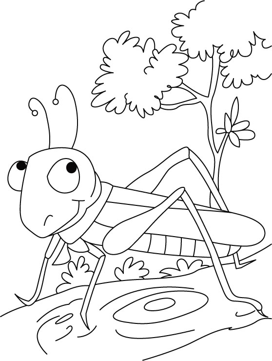 free-grasshopper-printable-painting-pages-for-preschool