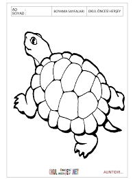 free printable animal coloring pages for preschool