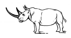 free-rhino-coloring-pages