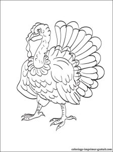 free-turkey-printable-coloring-pages-for-preschool