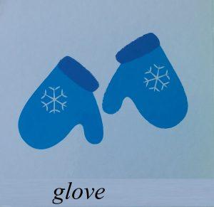 glove picture