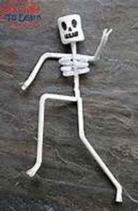 human body easy craft for kids