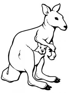 kangaroo-with-a-joey-coloring-page