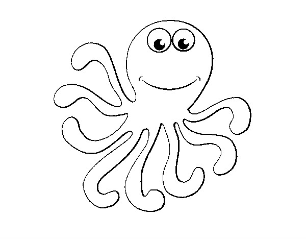 octopus-