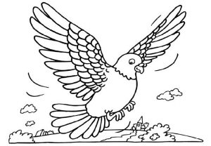 pigeon-coloring-free-page