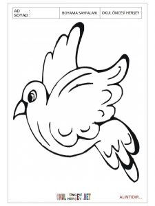 pigeon-printable-coloring-pages-preschool