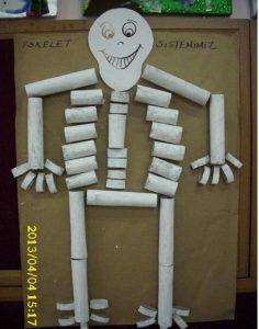toilet rolls skeleton human body craft