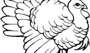 turkey-coloring-pages